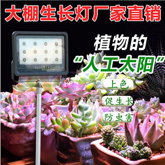 12w大棚补光灯蔬菜补光灯草莓专用补光灯增产增收 增效益