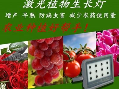 草莓专用补光灯草莓大棚补光灯草莓苗专用补光灯厂家直销