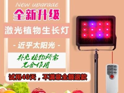 激光植物生长灯-厂家直销【优质推荐】