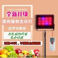 激光大棚蔬菜生长灯多少钱/蔬菜植物生长灯厂家价格