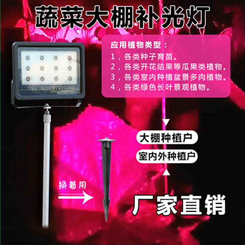 温室大棚补光灯价格/植物补光灯原理 植物补光灯厂家供应
