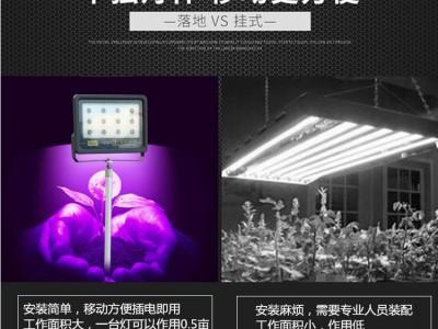 植物生长灯价格/大棚植物补光灯有用吗 植物生长灯厂家价格