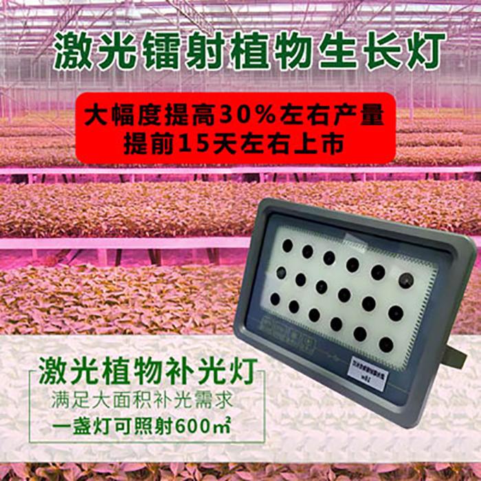 厂家供应植物生长灯价格/大棚植物补光灯多少钱  效果保证