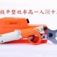 电动修枝剪刀