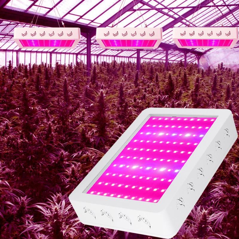 植物灯1000W光效LED植物生长灯红蓝配比新款植物灯
